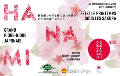 桜 パリ お花見